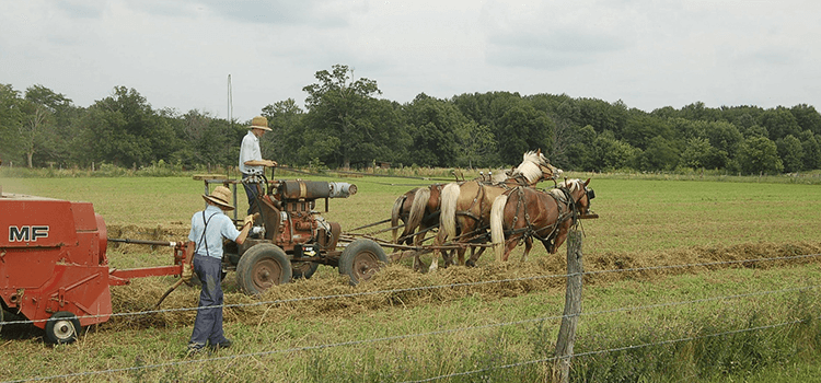 8 Lost Skills We Can Learn From The Amish